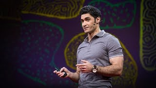 Computational Neuroscience at TED