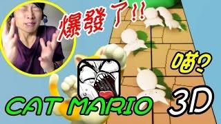【Cat Mario 3D】我好冷靜呀呀呀呀花!!~ (Stage 1PART1)打波子機
