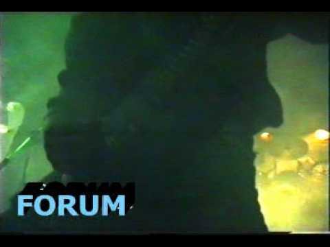 Forum - Zpitej jak dán