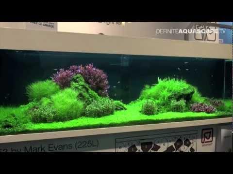 Aquascaping - Tropica planted aquariums at InterZoo 2012