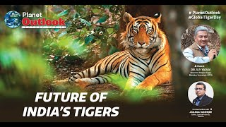 Planet Outlook: Future of India's Tigers