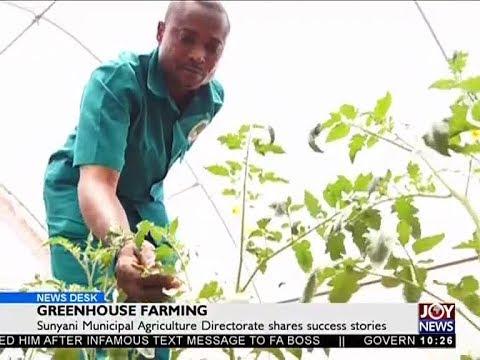Greenhouse Farming - News Desk on Joy News (1-5-18)