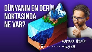 What's in the deepest point in the world?