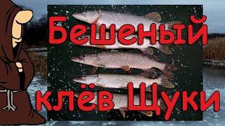Рыбалка на жерлицы в ноябре