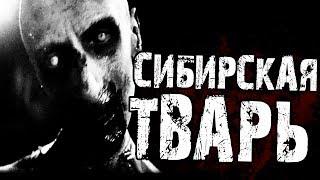 Страшные истории на ночь   - СИБИРСКАЯ ТВ*РЬ...