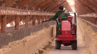 норковая ферма