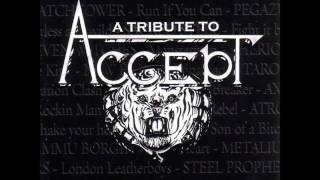 "GRAVE DIGGER - ""Starlight"" (Accept Cover)"