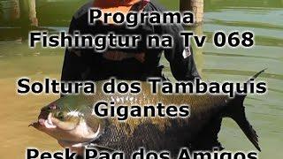 Programa Fishingtur na TV 068 - Soltura de Tambaquis