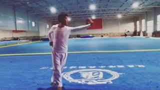 [ WUSHU TUTORIAL ] Learn WUSHU with Zhao Jie - WORLD CHAMPION