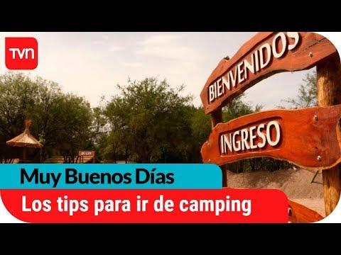 Camping: La otra forma de veranear en Chile | Muy buenos días | Buenos días a todos
