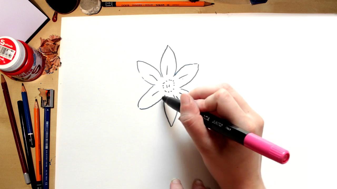 Como dibujar la flor Grandalla, o Narciso del Campo (comentado)