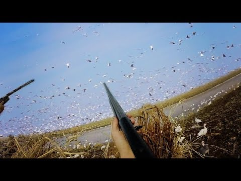 snow-goose-jump-shoot-run-and-gun