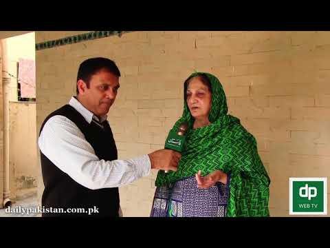 Termite Control Treatment in Lahore