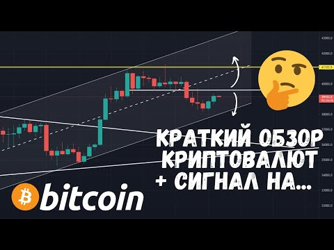 Bitcoin kazino nėra indėlių premijų