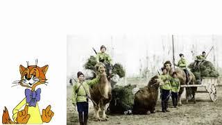 Почему царская Россия захватила Туркестан (Центральная Азия)?