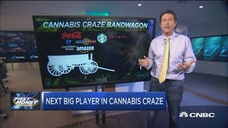 This is the next big industry to jump on the cannabis craze bandwagon, trader says