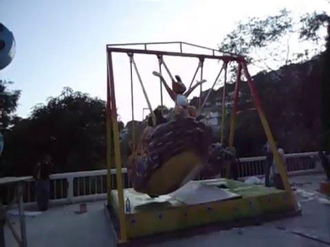 Woody Swing Twin Amusement Ride