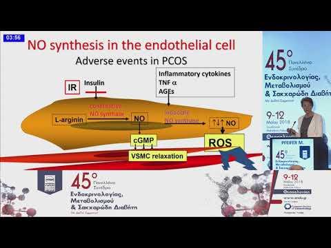 Μ. Pfeifer - Hyperandorgenism and cardiovascular risk