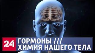 Гормоны. Химия нашего тела. Документальный фильм - Россия 24