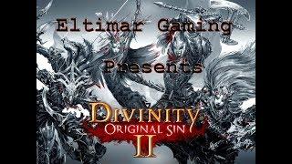 Let's Play Divinity Original Sin 2 - 52 Crazy Lady