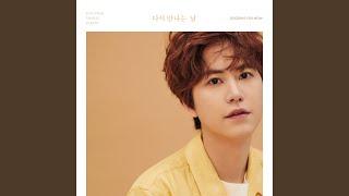 Kyuhyun - 다시 만나는 날 Goodbye for now (Chinese Version)