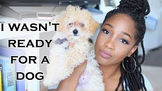 I Wasnt Ready For A Dog | Tips For New Puppy Owners + New Puppy Must Haves | Entrepreneur Life