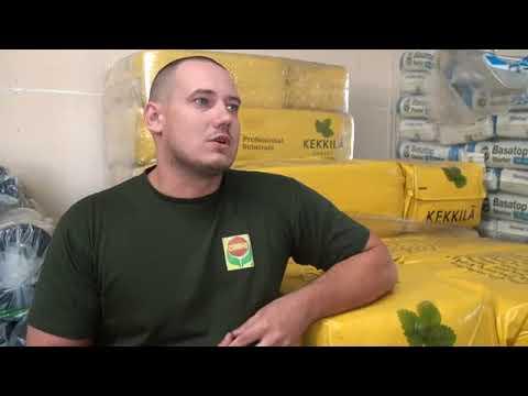 Pinworm tojások vizsgálatára