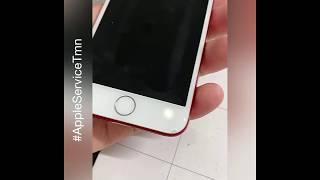 Заменить стекло Apple iPhone 7 в Тюмени