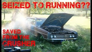 Rescued Galaxie First Start Attempt in 30 Years!!