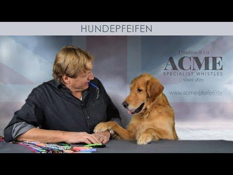 ACME Hundepfeife erklärt in 5 Minuten - das Orignal aus England