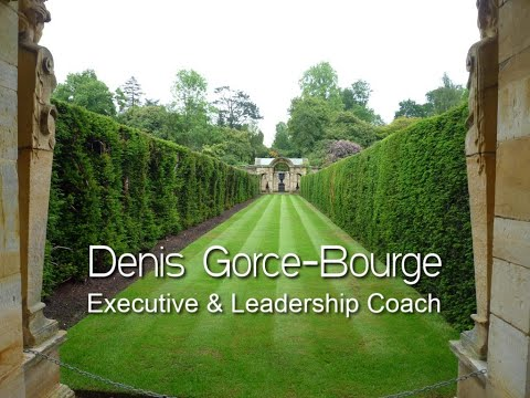 Executive and Leadership Coach