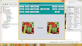 Digital Image Processing Project in JAVA |All filters applied