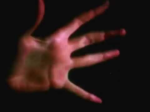 Evil Dead (1981)- Tree Attack Scene