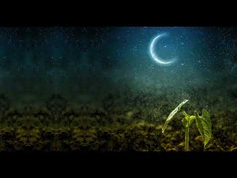, title : 'GARDENING BY THE MOON - Learn How To Garden By The Moon's Phases - Plant by the Moon Calendar