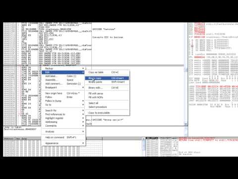 How to Hack Register a program Using OllyDbg MrBills - Naijafy