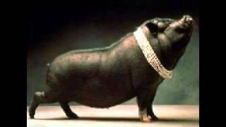 War Pigs - Move B***h  merged