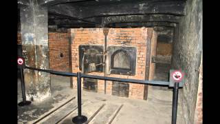 Auschwitz then and now