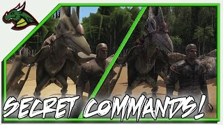 5 SECRET ARK COMMANDS!!