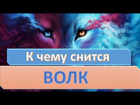 К чему снится волк | СОННИК