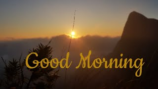 Good Morning Whatsapp Status\\Perfect Morning View Point\\Good Morning Wishes\\Quotes\\Messages
