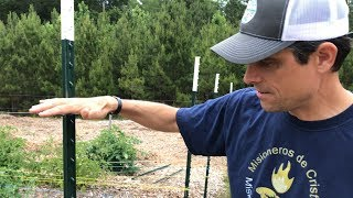 Cheap, Fast, & Easy DIY Garden Deer Fence That WORKS
