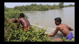 Big size lobster fishing and cooking / Sea fishing
