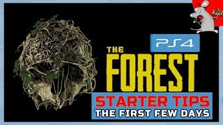 THE FOREST PS4 STARTER TIPS   How To Survive The First Few Days