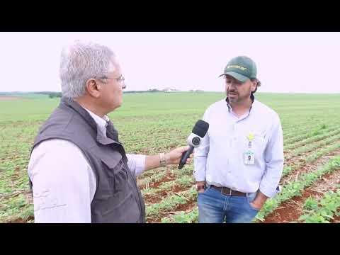 Tecnologia é aliada dos agricultores
