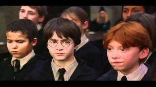 Harry Potter and the Philosopher's Stone (2001) Video