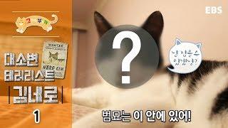 고양이를 부탁해 - 대소변 테러리스트 김네로_#001