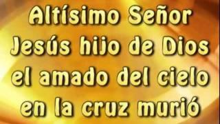 Digno Es El Señor (Pista) (Letra) - Vino Nuevo /  Marcela Gandara