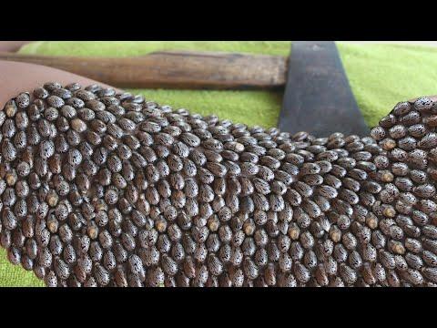Ki mennyit kezelt pinwormokat egy felnőttnél