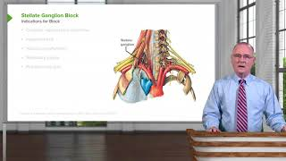 Stellate Ganglion Block – Head & Neck Anatomy