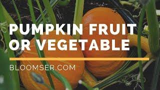 Is pumpkin fruit or vegetable? How to grow pumpkins in your garden?